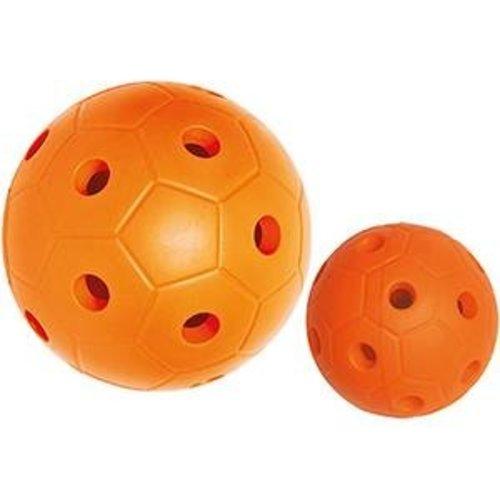 Goalball Trainer groot