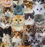 """""""NEW CATS""""  handgemachte MASKENTASCHE"""