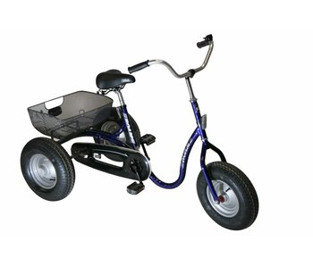 Roam Trike Junior robuuste driewieler