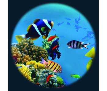 Magnetisch 6'' effectwiel thema: Tropical Fish