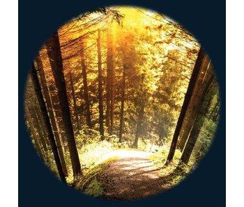 """Magnetisch 6"""" Effectwiel thema: Seasoned Woods"""