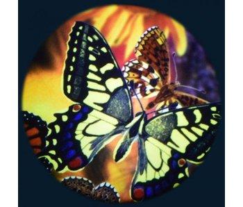 "Magnetisch 6"" Effectwiel thema: Butterflies"