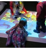 Experia Experia Fixed Interactive Floor System