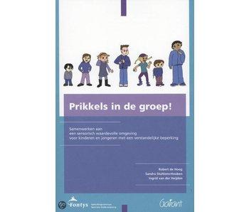 Boek Prikkels in de groep