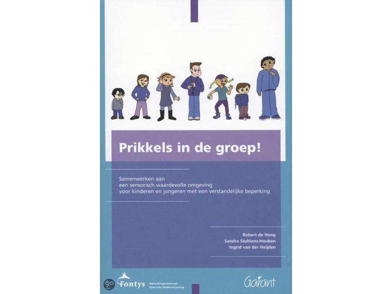 Boek Prikkels in de groep   171blz