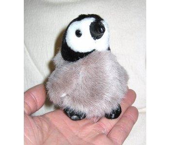 Baby keizer pinguin