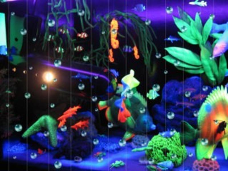 Atelier Michel Koene Blacklightkast aquarium met bubbel front