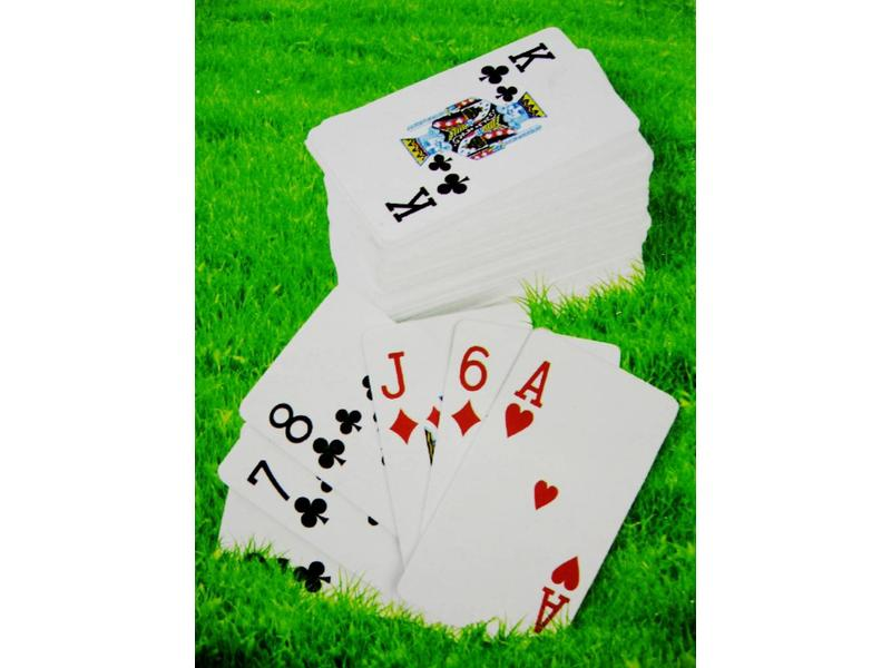 Kaartspel voor buiten   18 x 10 x 0,5cm
