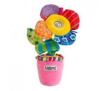 Lamaze Licht en geluiden bloem
