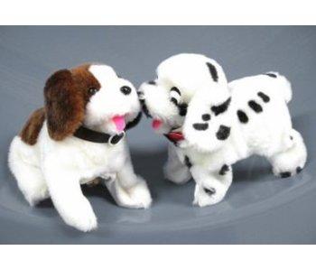 Bewegende dieren Hond
