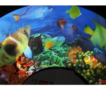 Effectwiel beeld FG7263 Tropical Fish