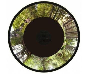 "Effectwiel beeld groot 9"" thema:  Forest"