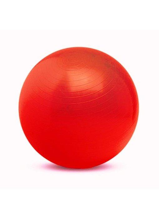 Gymnic Physio-ball rood