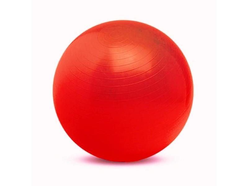Gymnic Gymnic Physio-ball rood Ø120cm