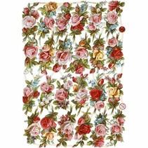 Scrap with beautiful print motif