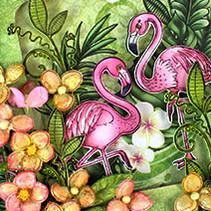 la dernière collection: Tropical Paradise