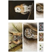 Papier découpage 50x70cm doux, Owl