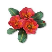 Estampage et Pochoir gaufrage, Sizzix, ThinLits - Fleur, Primrose