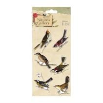 oiseaux 3D, 6 pièces