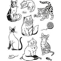 Transparante stempels, katten