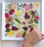 Exlusiv Un conjunto de flores secado y prensado