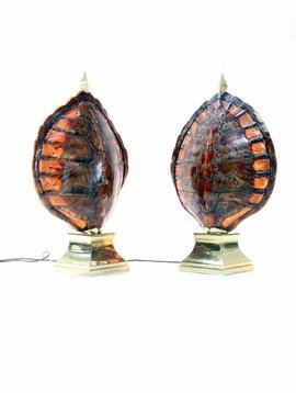 Koppel schildpad lampen