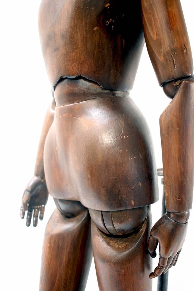 Anatomisch studie model 1860 massief hout