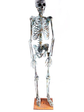 Skeleton bronze