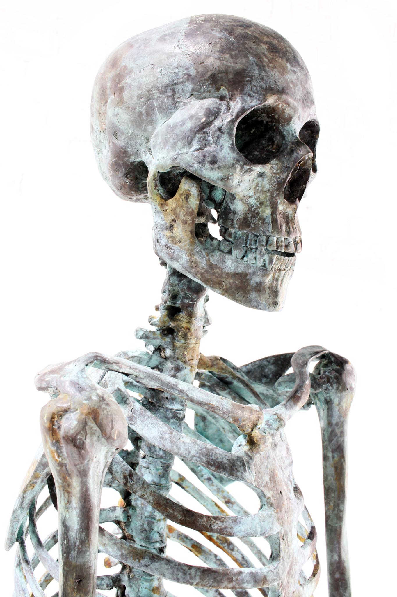 skeleton human body in solid bronze