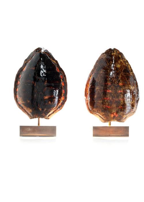 Belgo Chrom Tortoise lamps