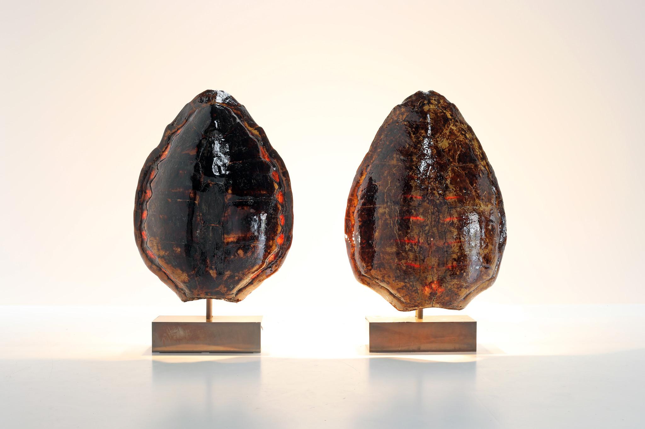 Belgo Chrom Tortoise lampen, jaren 60