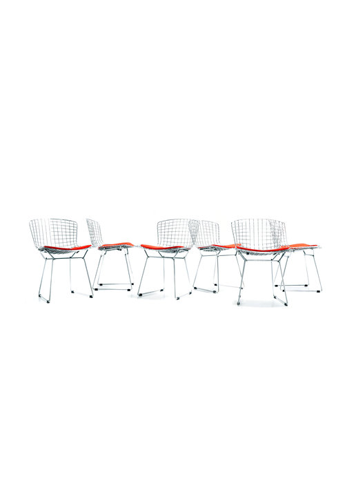 Set Bertoia sidechairs, 1953