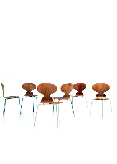 Arne Jacobsen Ant Chairs, 1950's