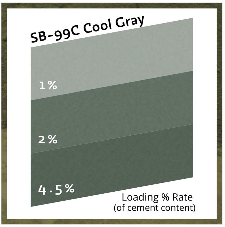 Buddy Rhodes Cool Gray SB99C - Puur Pigment, 450gr