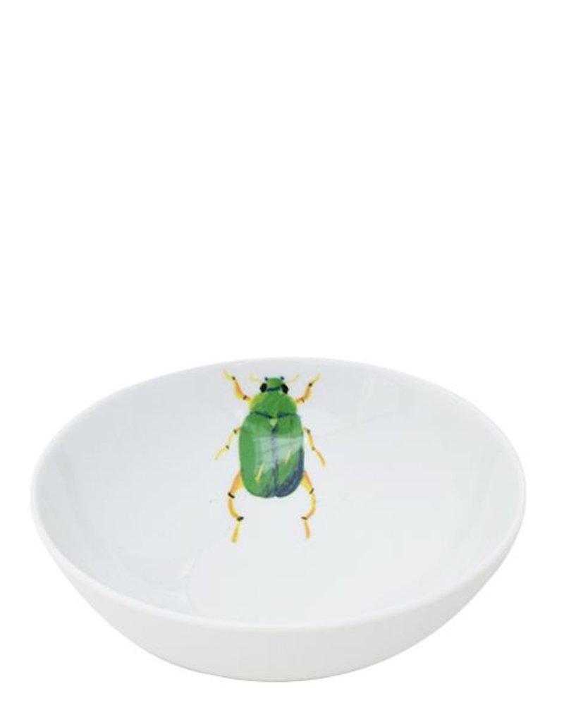 Catchii kom medium Beetle