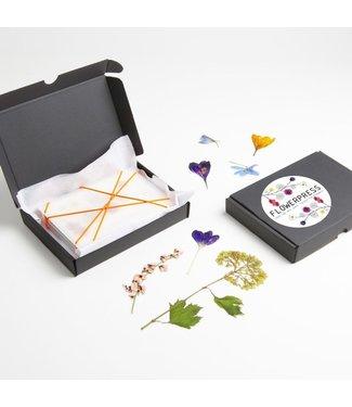 Studio Carmela Bogman De Pocket Flowerpress