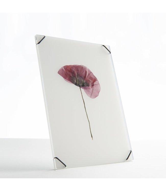 Studio Carmela Bogman FlowerFrame - Ghost White - Medium