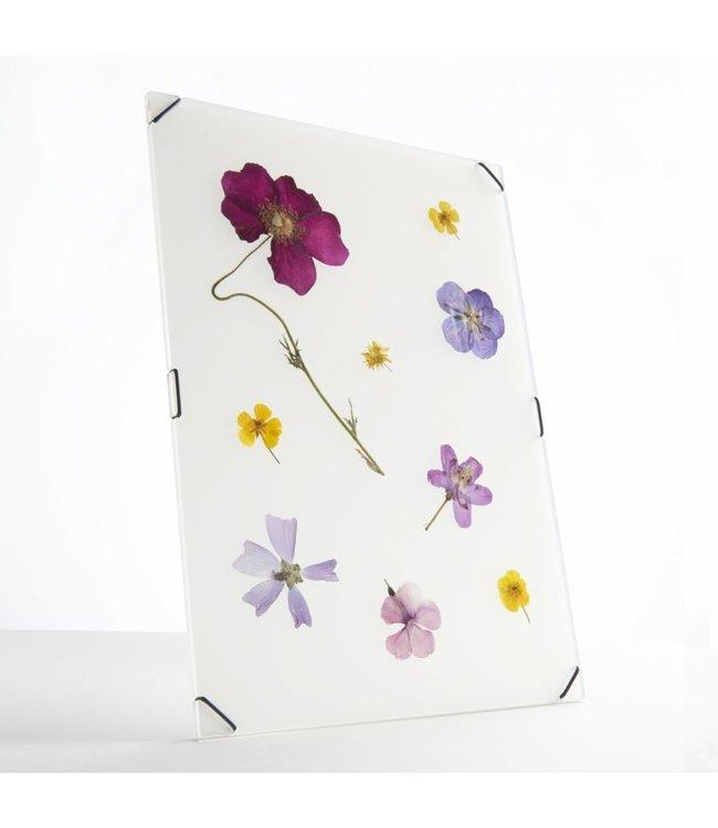 Studio Carmela Bogman FlowerFrame - Ghost White -Large