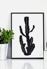 Cactus Poster A3 Ingrid Petrie