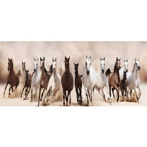 Foto op glas Paarden