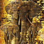 "Wanddecoratie ""Golden elephants"""