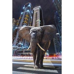 "digital art wanddecoratie ""Elephant in city"""
