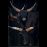 wanddecoratie dieren en wildlife