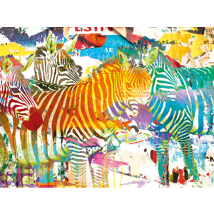 Changeable art Camouflage Zebra