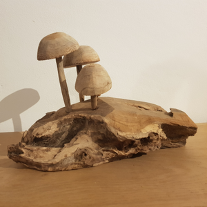 Paddenstoelen op stam