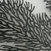 Metalen wanddecoratie Koraal