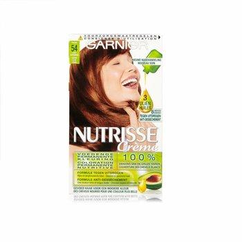 Garnier Nutrisse  54 Praline