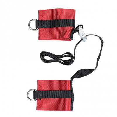 Booster Loop set harness DLX
