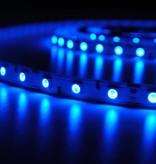 Striscia LED 5050 60 LED/m Blu - per 50cm