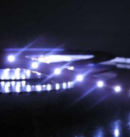 LED en bande Blanc Froid - par 50cm